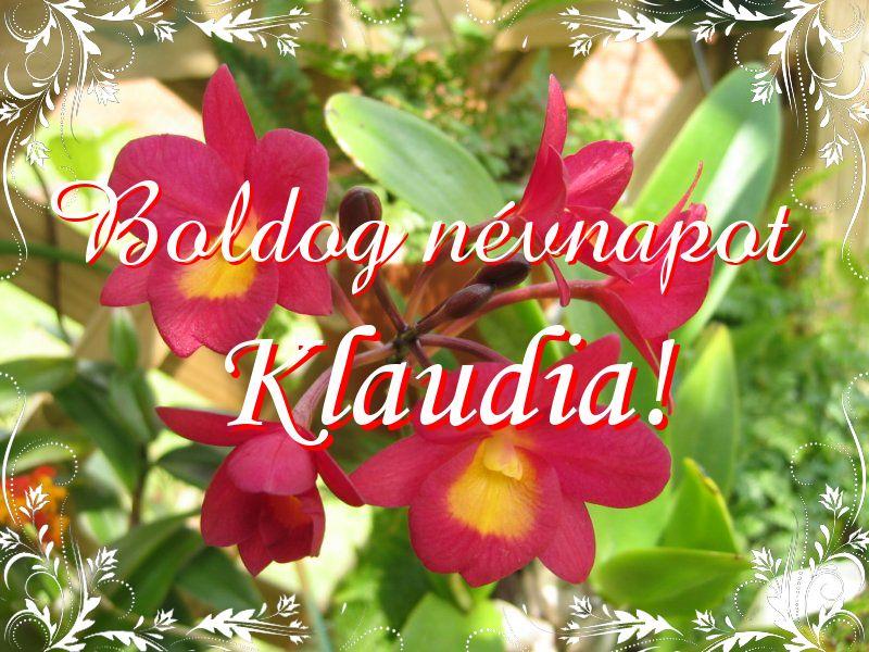 klaudia névnapi képek Mikor van Klaudia névnap?   A név jelentése eredete és becézése. klaudia névnapi képek