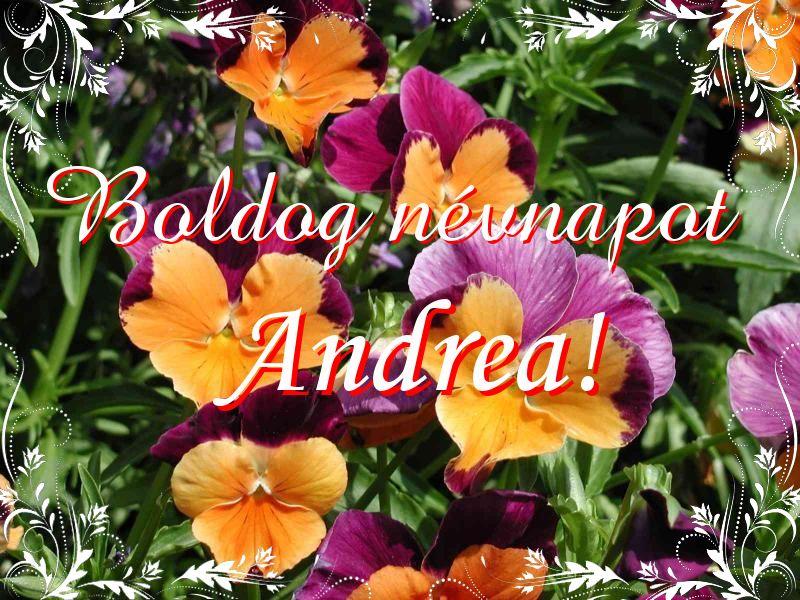 andrea névnapi képek Mikor van Andrea névnap?   A név jelentése eredete és becézése. andrea névnapi képek