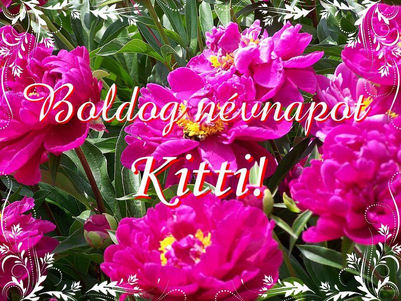 kitti névnap köszöntő Mikor van Kitti névnap?   A név jelentése eredete és becézése. kitti névnap köszöntő