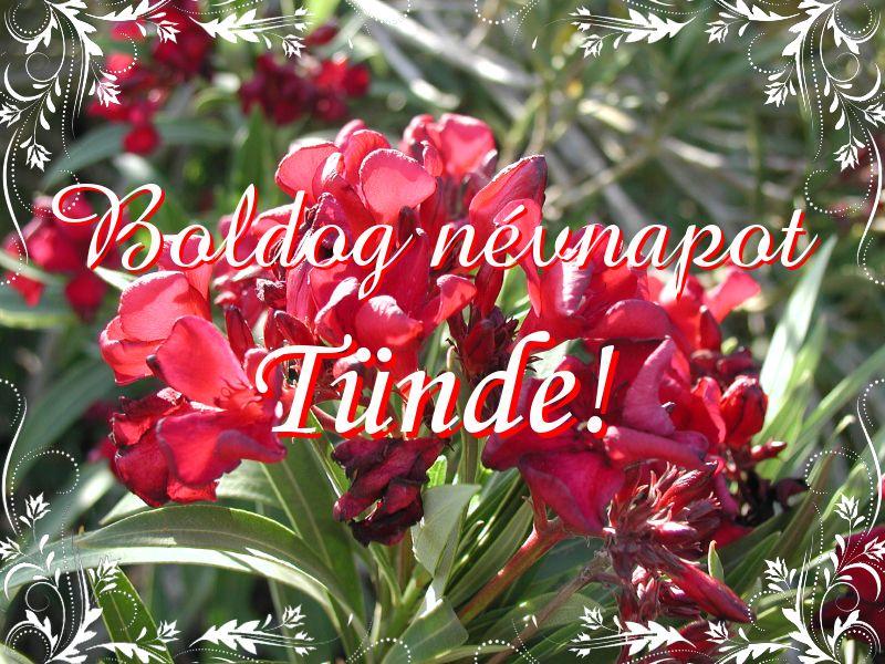 tünde névnap köszöntő Mikor van Tünde névnap?   A név jelentése eredete és becézése. tünde névnap köszöntő