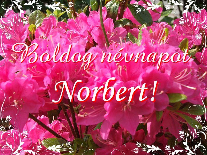 névnapi köszöntő norbert Mikor van Norbert névnap?   A név jelentése eredete és becézése. névnapi köszöntő norbert