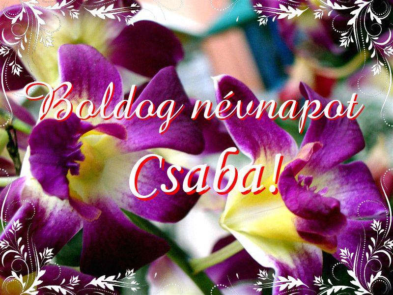 csaba névnap köszöntő Mikor van Csaba névnap?   A név jelentése eredete és becézése. csaba névnap köszöntő