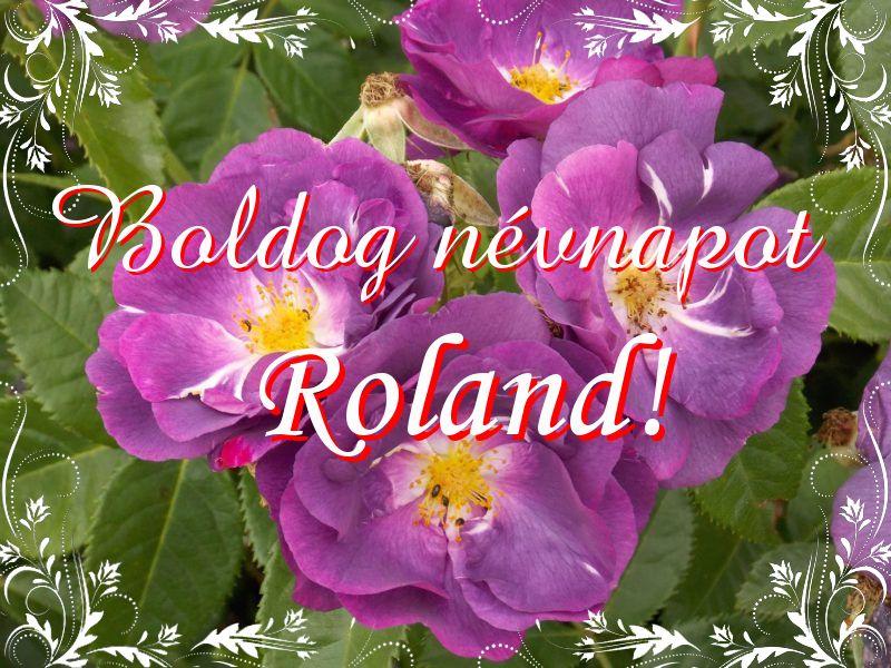 névnapi köszöntő roland Mikor van Roland névnap?   A név jelentése eredete és becézése. névnapi köszöntő roland