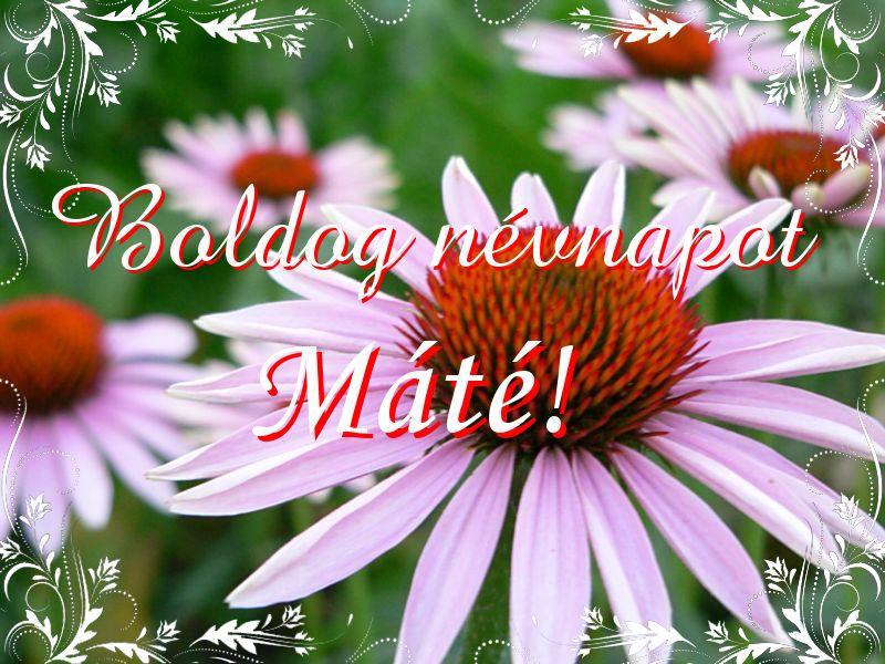 máté névnapi köszöntő Mikor van Máté névnap?   A név jelentése eredete és becézése. máté névnapi köszöntő