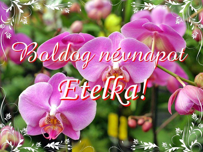 etelka névnapi köszöntő Mikor van Etelka névnap?   A név jelentése eredete és becézése. etelka névnapi köszöntő
